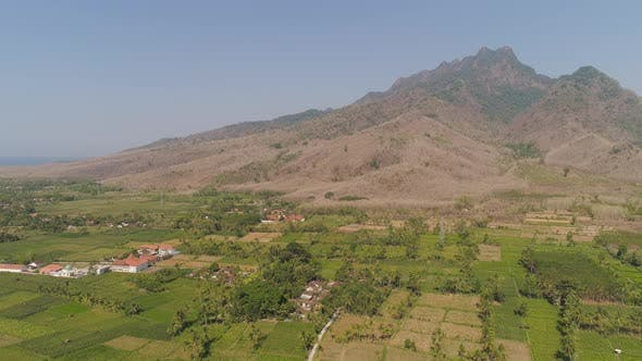 Thumbnail for Agricultural Land in Indonesia