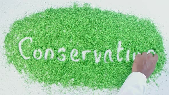 Thumbnail for Green Writing   Conservation