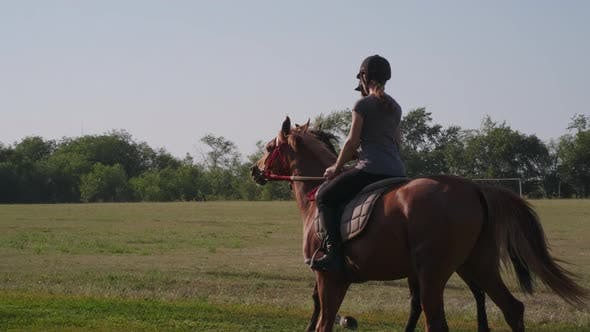 Equestrian Sport Training at Summer Day Two Horsewomen Are Riding