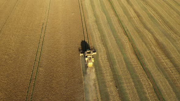 Thumbnail for Aerial View Combine Harvesting Wheat