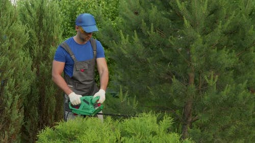 Male Gardener in a Protective Suit Prunes Bushes with an Electric Trimmer