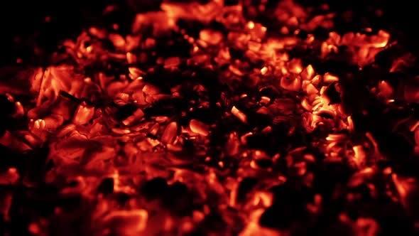 Burning Coal, Close Up of Red Hot Coals Glowed in Bonfire