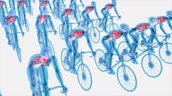 4K anatomy of a X-ray cyclists riding