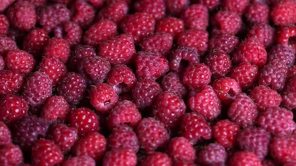 Rotating Ripe Raspberry