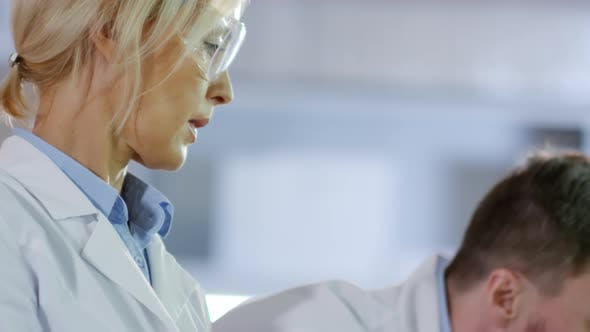 Two Scientists Working Together in Laboratory
