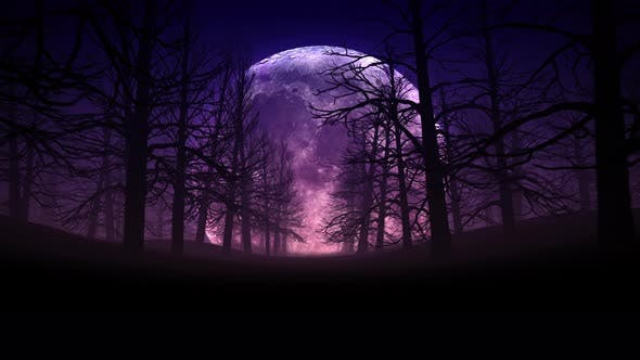Thumbnail for Full Moon Night In Forest Halloween Background 01 4k