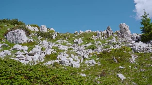 Mountain Rocks Among Green Grass