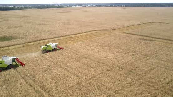 Thumbnail for Aerial View Combines Harvest Wheat Against Landscape