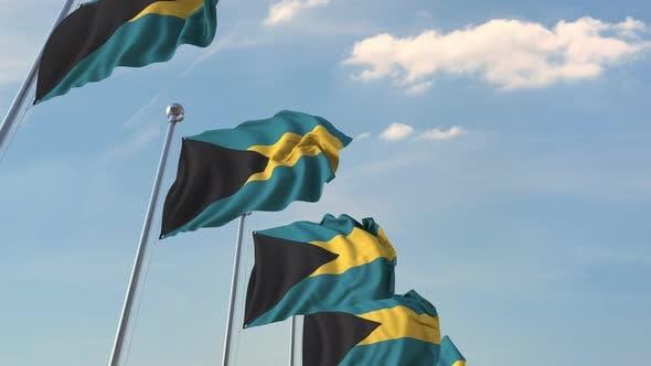 Thumbnail for Fliegende Flaggen der Bahamas