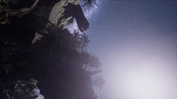 Thumbnail for Astrophotography Star Trails Over Sandstone Canyon Walls