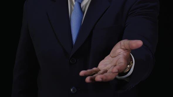 Thumbnail for Single Hand Open Reveal