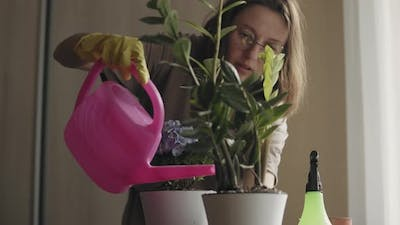 Young Woman Watering Green Plant in Pot