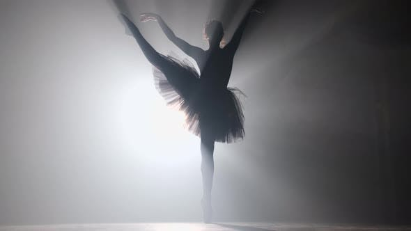 Thumbnail for Professional ballerina dancing ballet in spotlights smoke on big stage.
