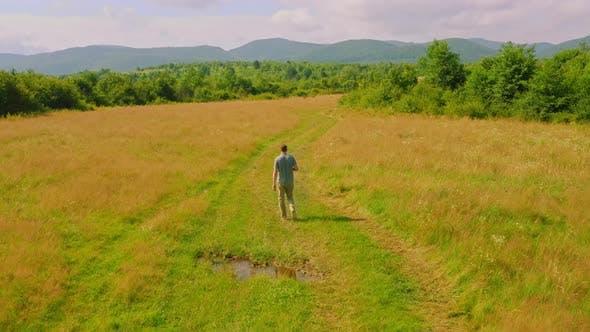 Drone Flies After Walking Man Summer Meadow