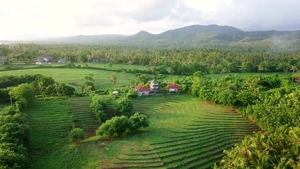 Thumbnail for Aerial View of Bali