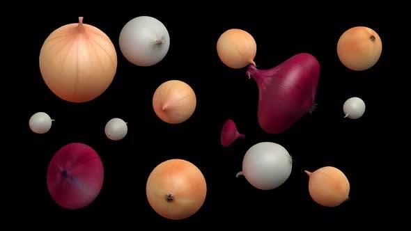 Type Of Onion