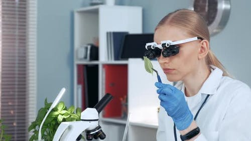 Close-up of Female Chemistry Research Scientist in Magnifying Eyeglasses Looking on Sample
