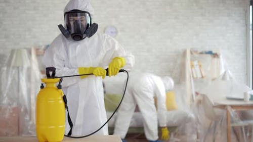 Exterminator Rodent and Mold Destruction Cleaning Company Work