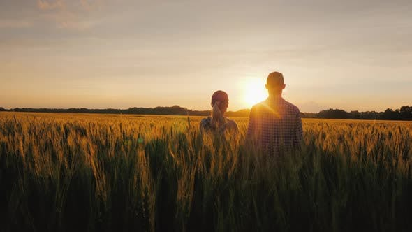 Thumbnail for Two Farmers, a Man and a Woman, Are Looking Forward To the Sunset Over a Field of Wheat