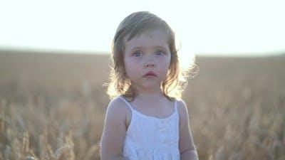 Portrait of Little Girl in a White Dress in Field