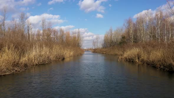 Thumbnail for The River Between Trees And Reeds In Early Spring