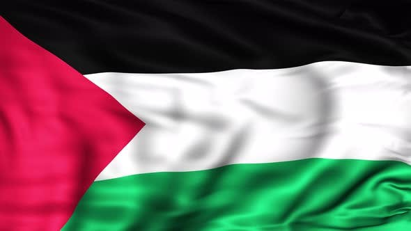 Cover Image for Palestine Flag
