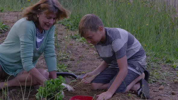 Senior woman and grandson planting a plant