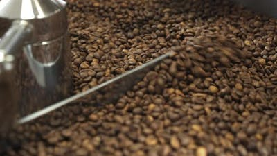 Process of Grinding Coffee Beans in Machine