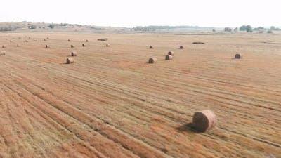 Field with haystacks. Haystacks on sloping field.