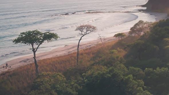 White sandy beach, Nosara, Guanacaste Province, Costa Rica. Aerial drone view