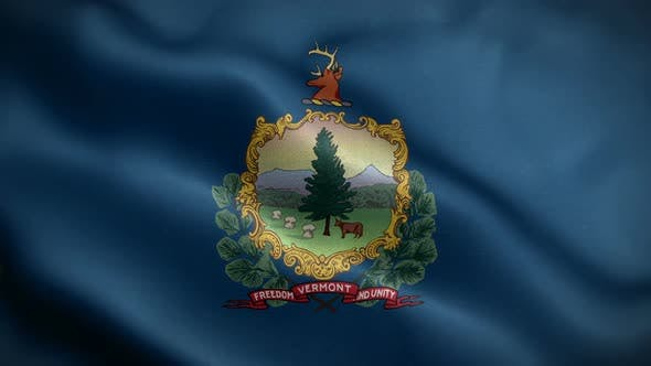 Vermont State Flag Blowing In Wind