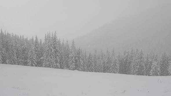 Thumbnail for Fantastic Winter Landscape
