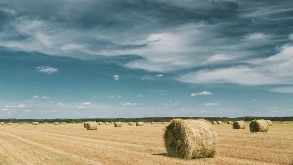 Rural Landscape Field Meadow With Hay Bales After Harvest. Time Lapse, Timelapse, Time-lapse