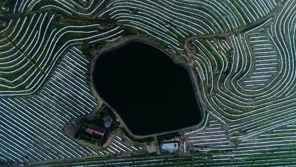 Thumbnail for Landwirtschaft: Bewässerungssee