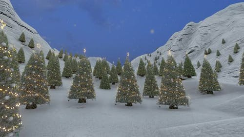 Winter Landscape With A Christmas Trees Decorated