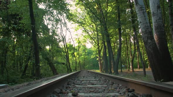 The Suburban Railway In Forest