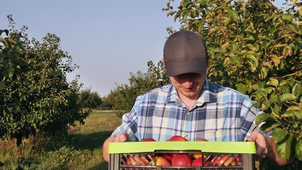 Thumbnail for Portrait Fruit-grower Outdoors  Video Prores