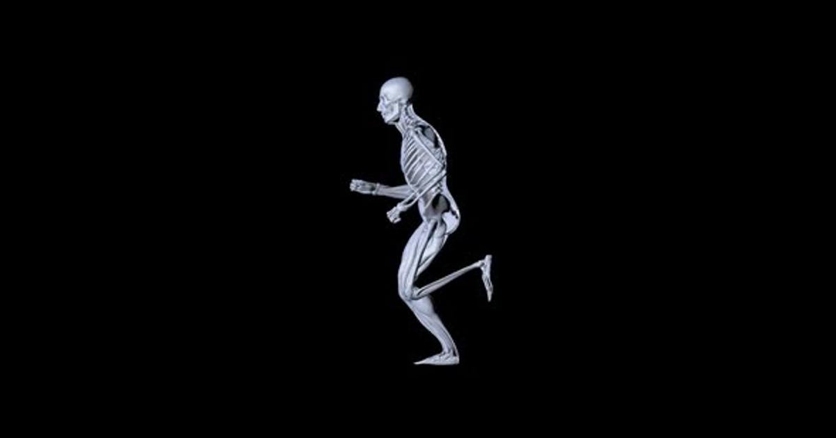 Skeleton Man Anatomy Running