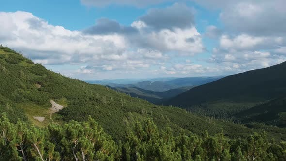 Panorama of Mountain Range with Coniferous Forests and Cumulus Clouds in the Sky