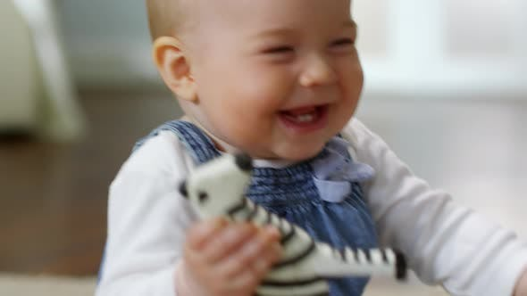 Caucasian Baby Playing with Toy Zebra