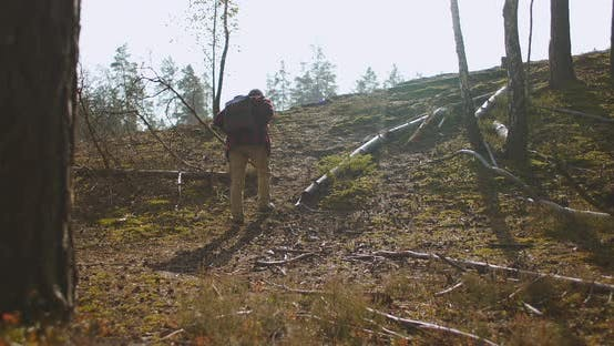 Thumbnail for Adult Man with Backpack Is Crossing Woodland at Autumn Day, Hiking Alone, Backpacking and Hiking at
