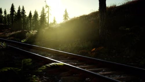 Autumn Colours Along a Railway Track at Sunset