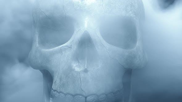 Thumbnail for Textured Skeleton Skull in Smoke