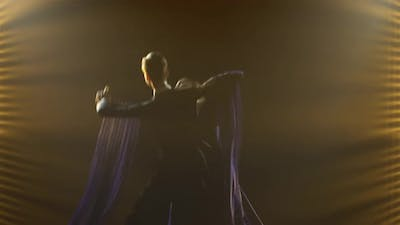Classical Waltz Performed By Professional Ballroom Dancers
