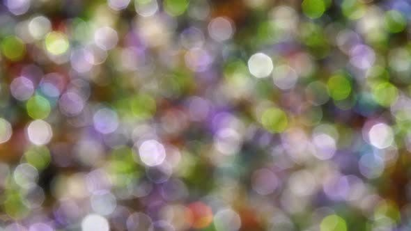 Thumbnail for Multicolored Beads Rotate In The Rays Of The Sun Bokeh 4