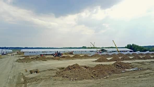 Construction Complex of Livestock