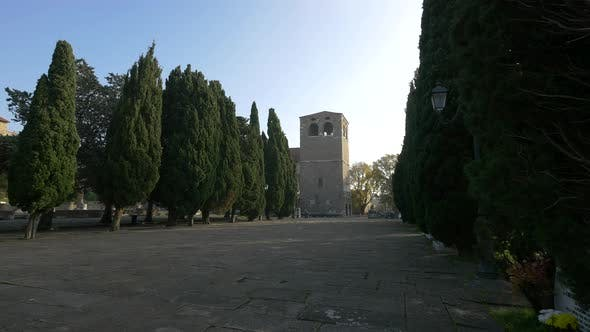 Thumbnail for Bell tower and trees
