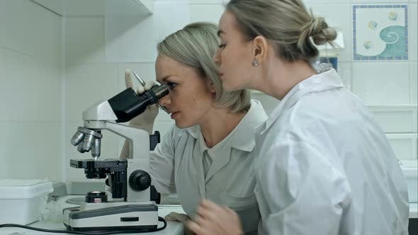 Thumbnail for Two Young Female Scientists Writes Report in Modern Laboratory, Using Microscope and Making Notes