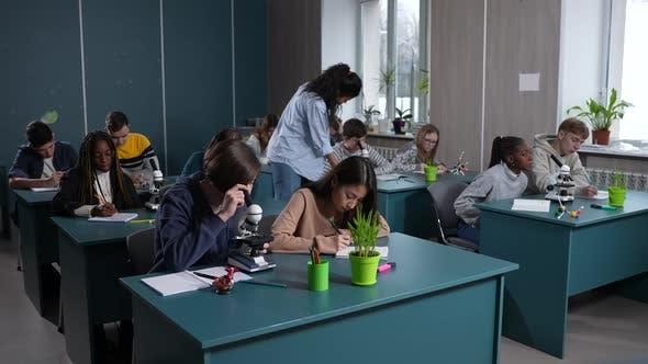 Woman Teacher Watching Work of Pupils in Classroom