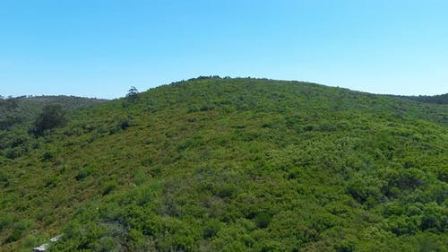 Bird-eye Wiev of a Rocky Grassy Mountain Range with a Trees and Hiking Trails on It.